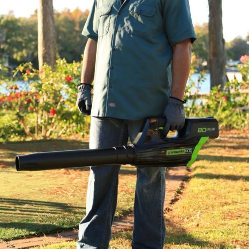 Greenworks GBL80300 2400102