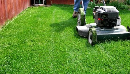 How To Mow Your Lawn – Tips & Tricks